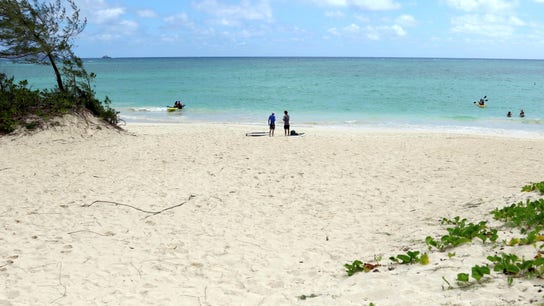 People have a hard time unplugging from work during vacation, survey shows