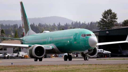 Bird strike reportedly suspected of having role in deadly Ethiopian Airlines Boeing 737 Max crash