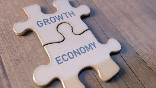 Dallas Fed's Kaplan says he expects US economy to grow at a solid 2.25-2.50% rate this year