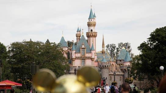 Local union representing Disney characters has leadership shakeup: report