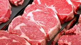 EU lawmakers approve more US beef imports
