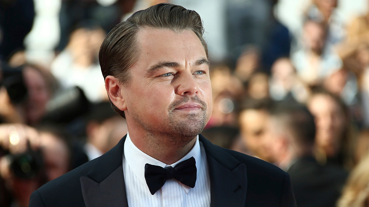 How much does Leonardo DiCaprio earn?
