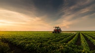 Coronavirus pandemic boosts demand for Washington-based family farm's products by 4,000%