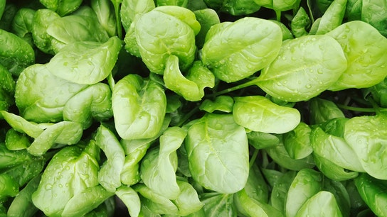This brand of baby spinach is being recalled for Salmonella