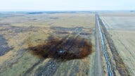 Congress wants review of Keystone pipeline in wake of spill