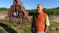 Sour grapes: Trade war puts cork in US wine sales to China
