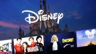 Alan Patricof on Disney+: 'Competition for content is enormous'