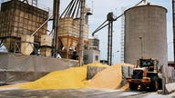 Former grain trader gets 8 years in prison for $11M scam