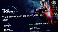 Disney+ off like a shot in streaming arms race