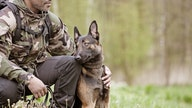 How these military dogs are training to defend our freedom