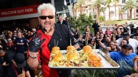 How much money Guy Fieri makes