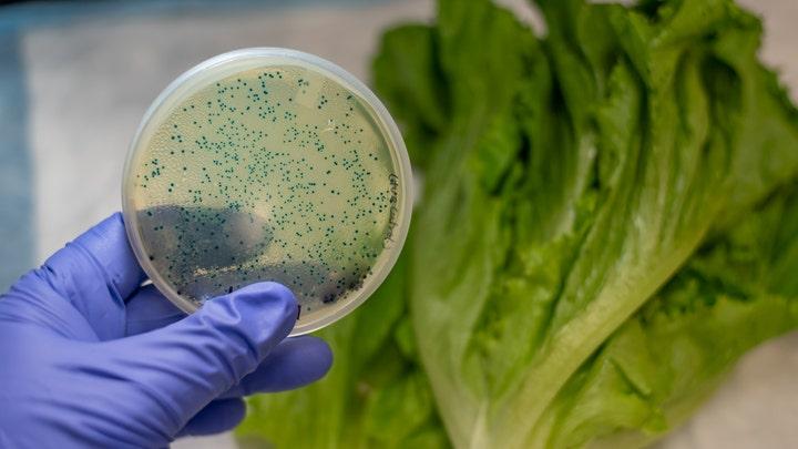 More major retailers recalling lettuce amid E. coli outbreak across US