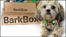 BarkBox credits Amazon for $250M boom in subscription business