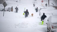 Hundreds of flights cancelled across the US after winter storms