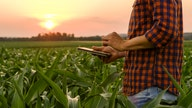 Millennial farmer turned YouTube influencer gives behind-the-scenes look at agriculture