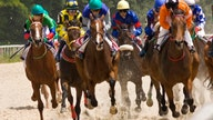 GIDDY-UP: Tax break for racehorse owners advances in Congress