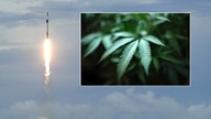 HIGH IN THE SKY: SpaceX reveals when it'll rocket hemp into space