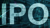 IPO market not 'slowing down' anytime soon: Expert
