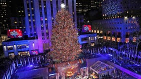 How much it costs to decorate, light the world's most famous trees