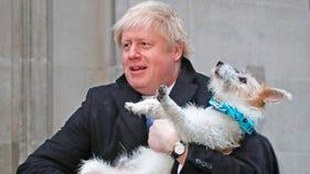 Boris Johnson's Conservatives to win majority of Parliament: UK exit poll