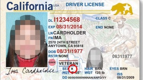 Nonbinary gender option on drivers' licenses is guzzling taxpayer funds