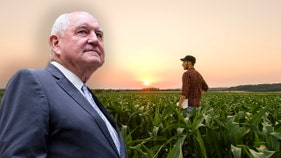Agriculture chief Perdue discusses Chinese threat to US farmers