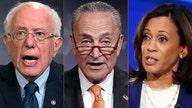 10 senators who voted against USMCA
