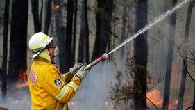 Australian wildfires may impact global food supply