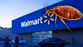 How some monster tried to unleash nasty infestation at Walmart: police