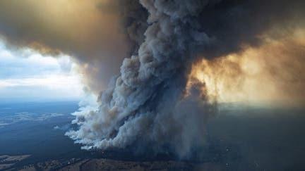 News Corp pledges AUD$5M to Australian bushfire relief
