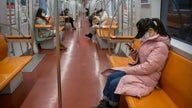 Coronavirus leaves millions of Chinese workers telecommuting