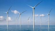 Developer to open hub to grow U.S. offshore wind industry