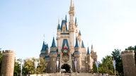 Coronavirus to close Tokyo Disneyland through mid-March