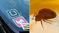 Uber, Lyft drivers in Dallas having cars treated for bedbugs