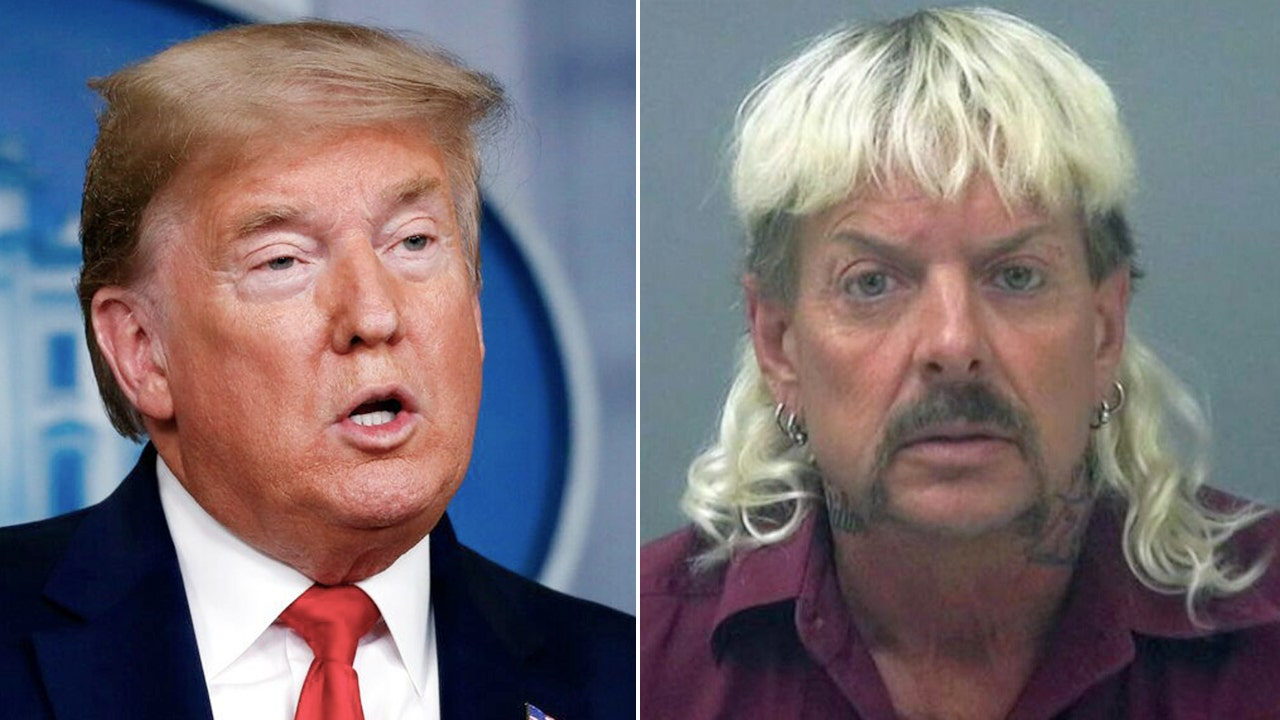 Netflix's 'Tiger King' Joe Exotic seeks presidential pardon