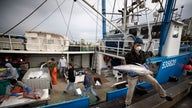 Amid coronavirus, fishermen return from sea with big catch, no place to sell