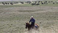 In coronavirus crisis, our farmers and ranchers are pandemic heroes