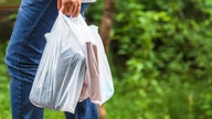Walmart, Target, CVS partner in search of plastic bag alternative