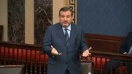 Coronavirus phase 4 stimulus bill can wait: Cruz, other Republicans