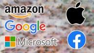 The 5 biggest brands in America