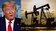 Trump administration tables more oil and gas lease sales