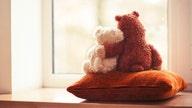 Coronavirus teddy bear scavenger hunt unites communities