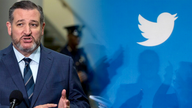 Ted Cruz calls for probe of Twitter over alleged violation of sanctions on Iran