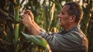 NASA, USDA partner on soil moisture tool for farmers, scientists