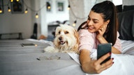 Adopting, buying a dog is most, least expensive in these US cities