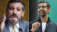 Cruz pressures Google on The Federalist, ZeroHedge ad crackdown