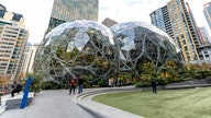 Amazon met with startups about investing, then launched competing products