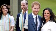 Prince Harry, Prince William to divide Princess Diana's memorial funds