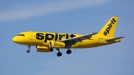Spirit Airlines employees battered in violent brawl over delayed flight