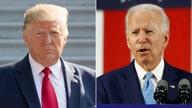 Biden 'blatantly ripping off' Trump's 'buy American' agenda: Navarro
